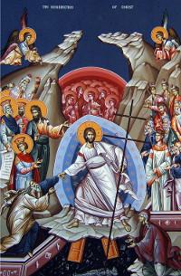 Расписание богослужений в Кафедральном соборе Вознесения Господня